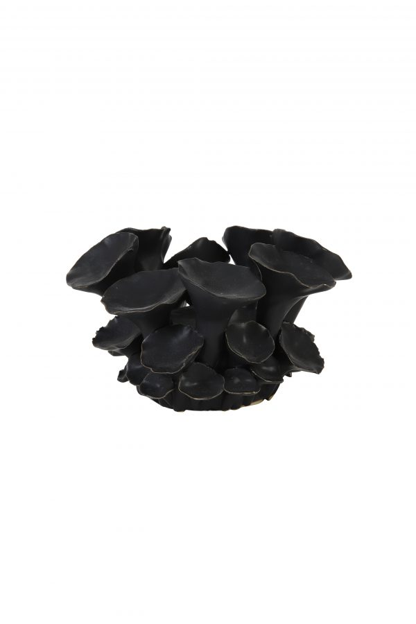 Theelicht Ø12x8,5cm PANTHEO keramiek zwart 7733512 Quality2life.nl